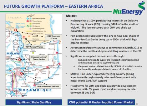 NuEnergy Gas Investor Presentation February 2013