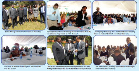 Stakeholders at Mines and Minerals Act Review Workshop (Taken from the Mining Review, May 2015)