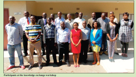 2016-06 Mining & Trade Review Malawi CEPA Mining Workshop Participants